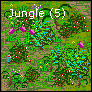 Jungle 5.png